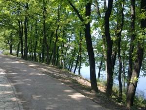 Parku i liqenit